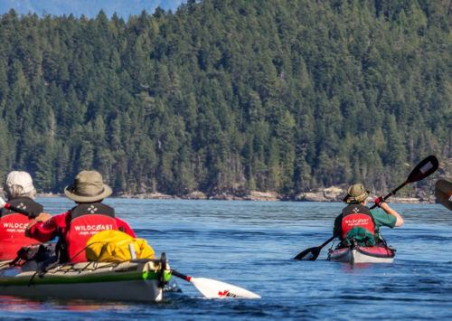 5 Tips for Planning Kayak Trips from Beginning to End