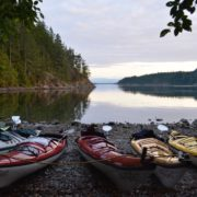 discovery-islands-1148-kayaking
