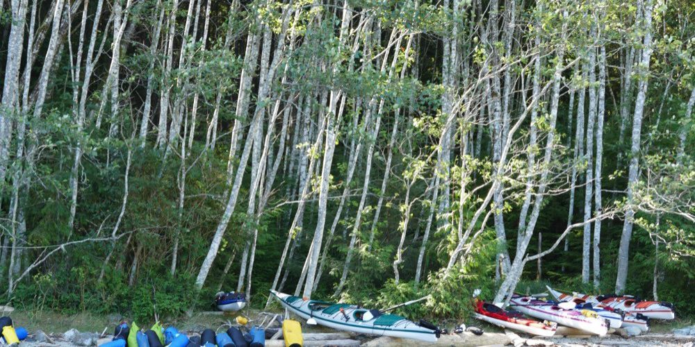discovery-islands-1223-kayaks-1000x666