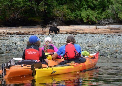 Vancouver Island Wildlife Snapshot