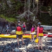 orca-camp-1497-kayaking-johnstone-strait-bc-1000x562