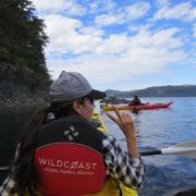 orca-camp-1600-kayaking-johnstone-strait-bc-1000x750