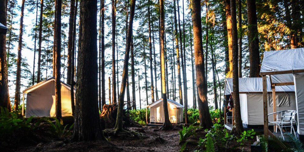 orca-camp-1707-tents-1000x662