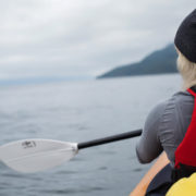 orca-camp-1732-kayaking-johnstone-strait