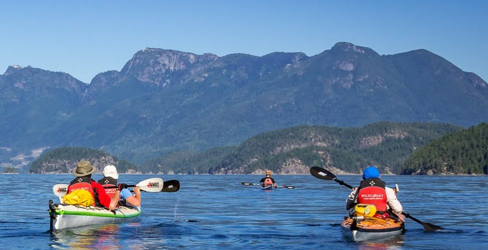 whales-wildlife-wilderness-kayaking-003-sea-kayaking