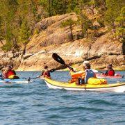 whales-wildlife-wilderness-kayaking-006-sea-kayaking